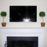 topiaries next to tv