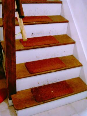 small carpet on treads
