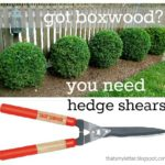 """H"" is for Hedge Shears"