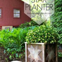 DIY Star Planter