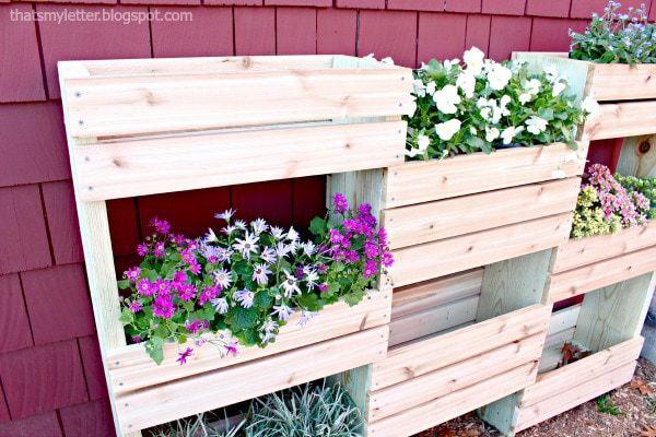 cedar planter against house