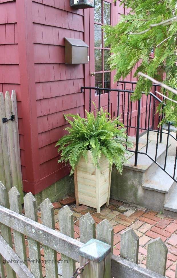 tall fence picket planter at back door