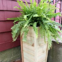 $10 Tall Fence Picket Planter