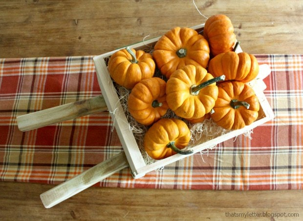 tabletop rustic wheelbarrow mini pumpkins