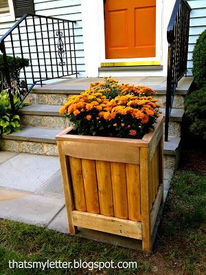 outdoor planter on bluestone steps