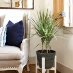 DIY Plant Stand with Free Plans