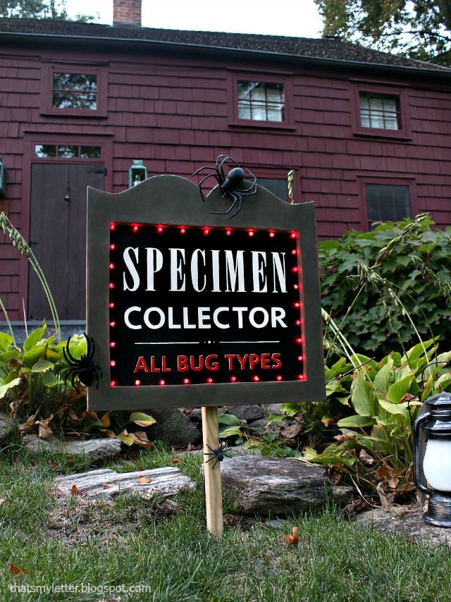 exterior Halloween decor