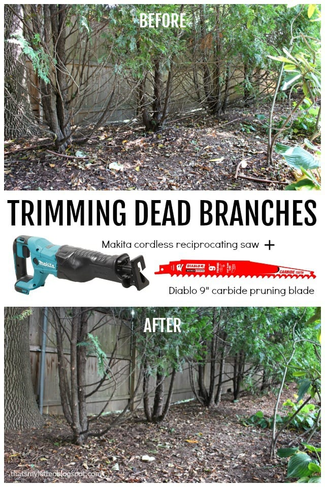 trimming dead branches with reciprocating saw