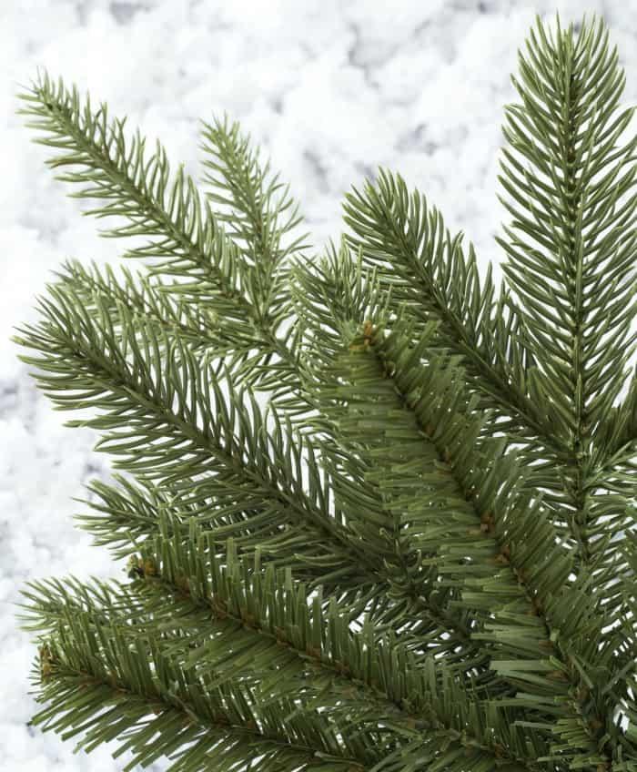 Kennedy Fir Slim artificial tree needle detail