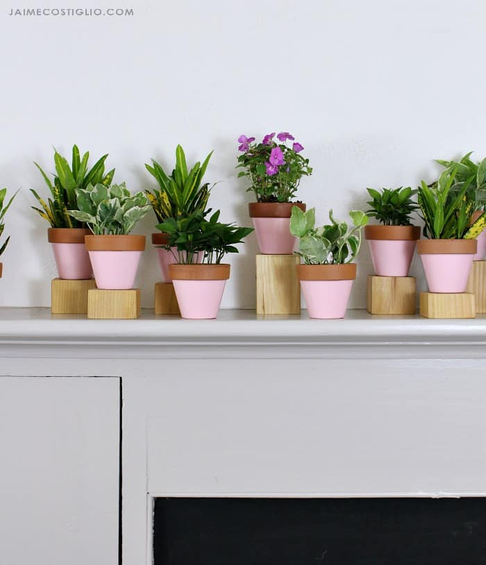 summer mantel potted plants