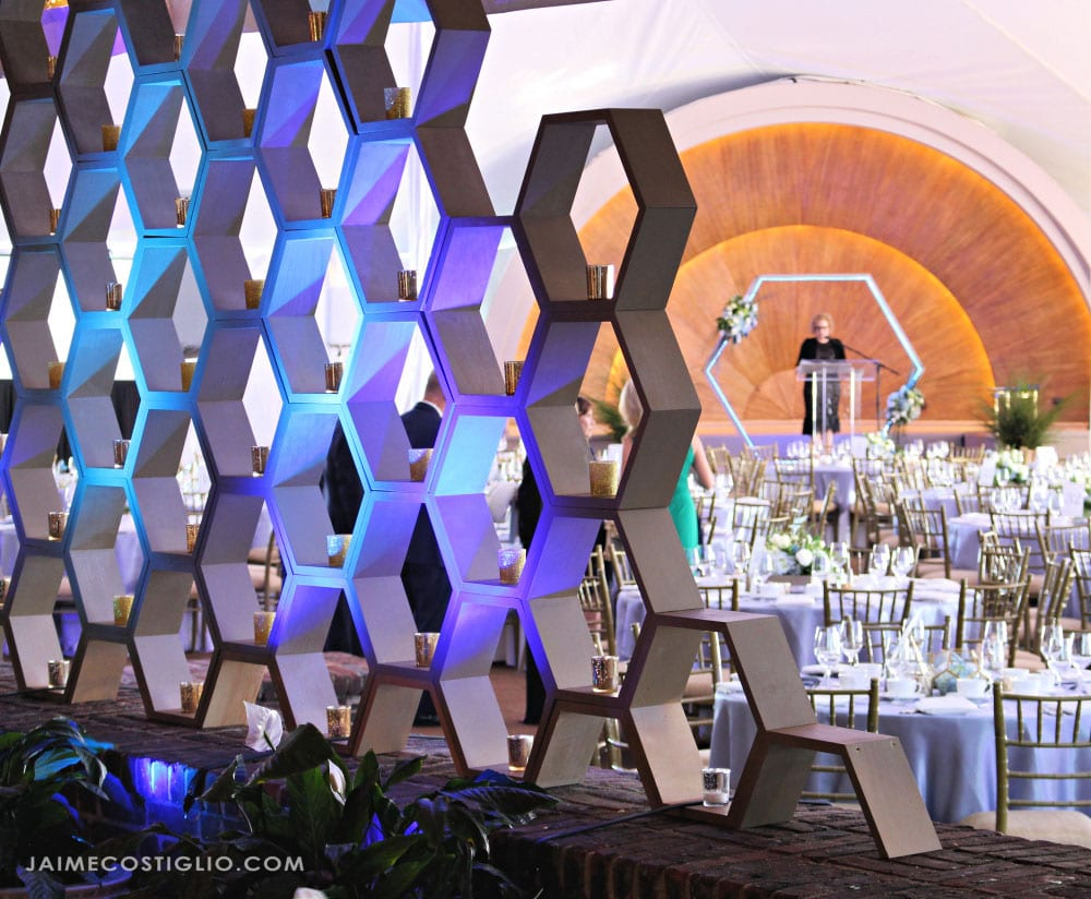 hexagon party decor