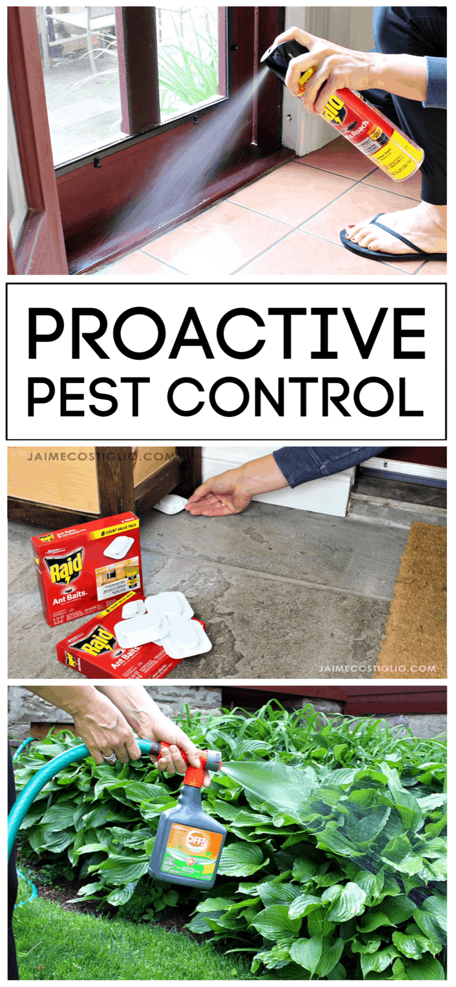 proactive pest control products